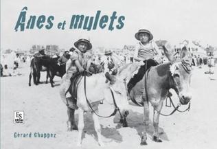 Couverture Anes et mulets