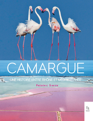 Couverture Camargue, une histoire en tre Rhône et Méditerranée